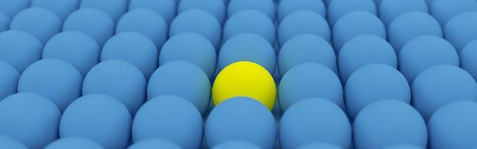 Focus e Distacco - Modelli di Successo