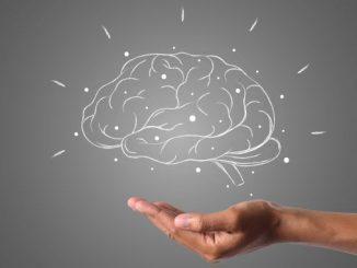 Brain Building: come le persone produttive sviluppano il loro cervello studiando