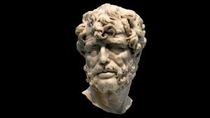 Seneca | Modelli di Successo